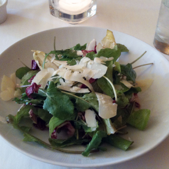 Arugula, radicchio and endive salad - Harvest - Wisconsin, Madison, WI