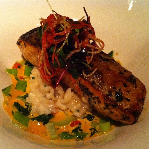 Scottish Salmon With Miso Glaze - The Stained Glass, Evanston, IL