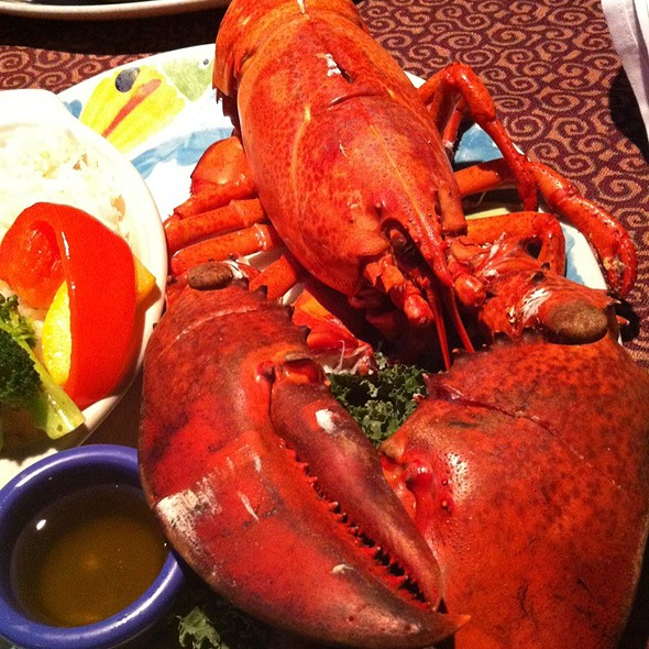 Nova Scotia Lobster - McKelvies, Halifax, NS