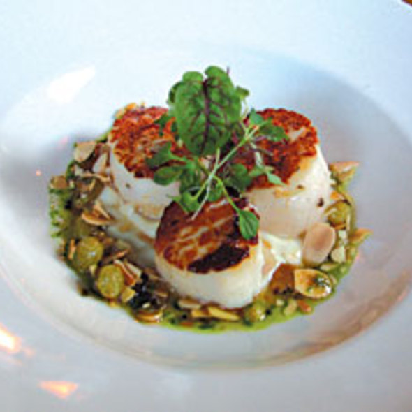 Seared Maine Day Boat Scallops - American  Seasons, Nantucket, MA