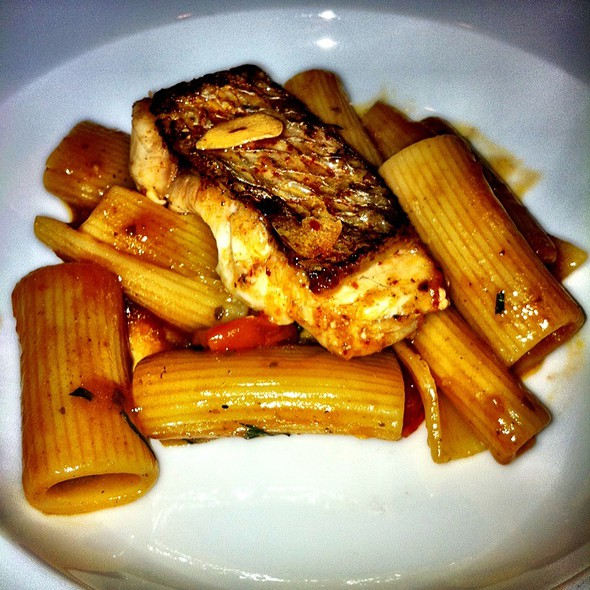 Rigatoni & Baby Snapper - The Four Seasons Restaurant – The Grill Room, New York, NY