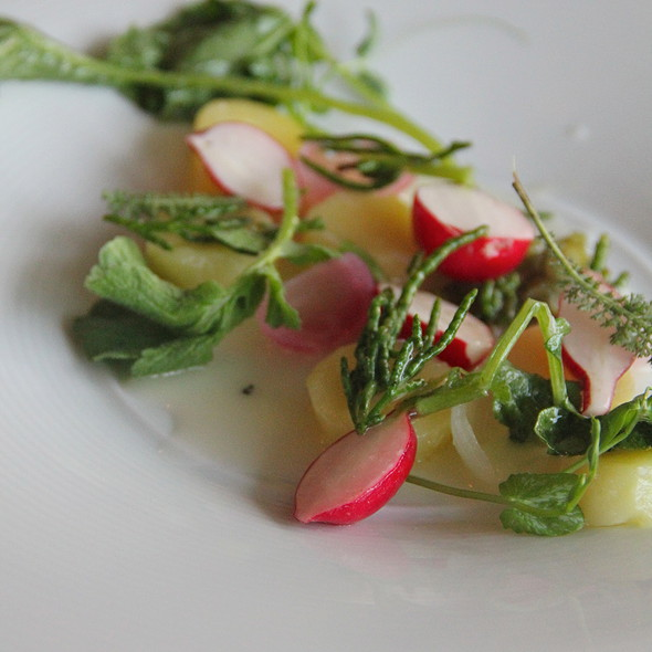 New potatoes and radish, buttermilk and great salt lake herbs - Forage, Salt Lake City, UT
