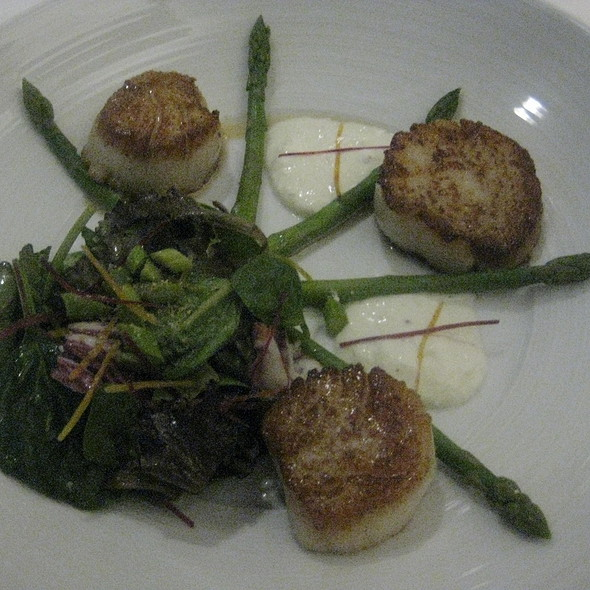 Seared Scallops Seafood Salad - Waterleaf Restaurant - Glen Ellyn, Glen Ellyn, IL